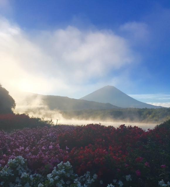 富士五湖①