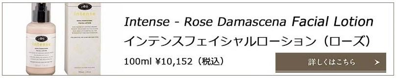 roseintensebanner